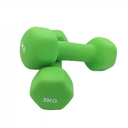 A Pair of Hexagon Shape Gym Yoga Matte Coated Dumbbell (2 x 0.5/1.0/1.5/2.0 kg)